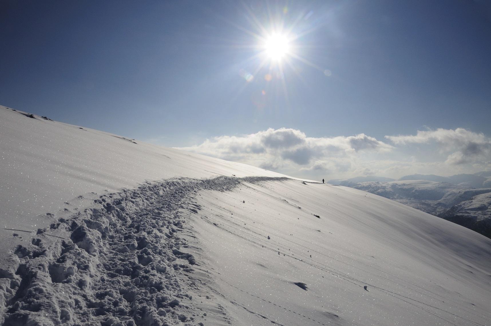 snowy h 2